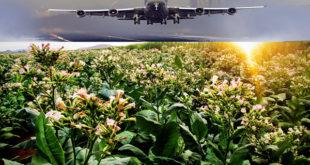 aereo con carburante da tobacco
